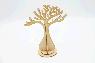 Дерево Баобаб в упаковке.